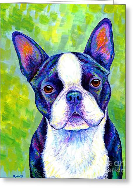 Colorful Boston Terrier Dog Greeting Card