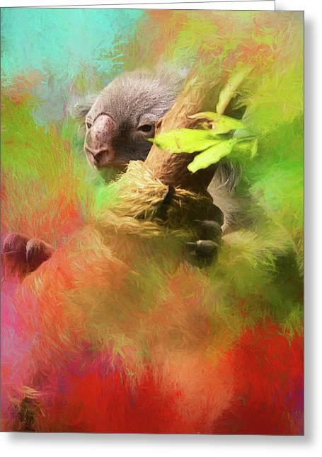 Colorful Koala Greeting Card