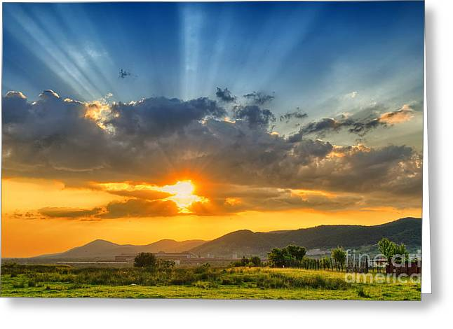 Colorful Sunset In The Summer Greeting Card