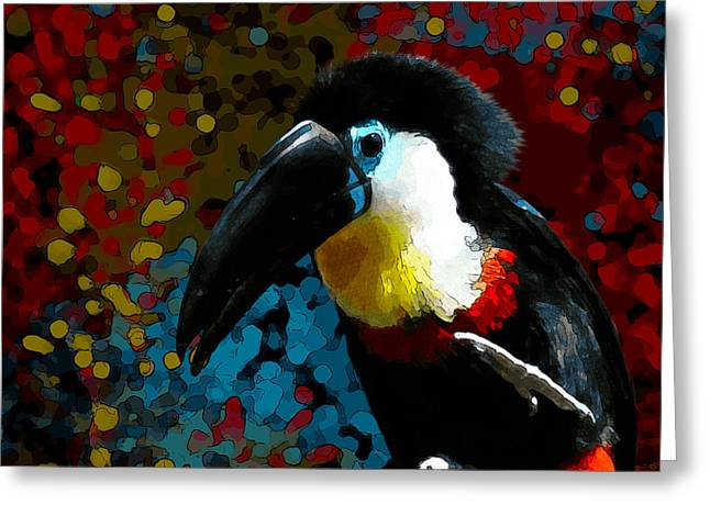 Colorful Toucan Greeting Card