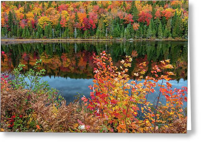 Greeting Card featuring the photograph Colors Of Aurtumn by Pierre Leclerc Photography