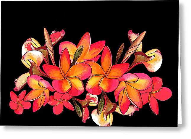 Coloured Frangipani Black Bkgd Greeting Card