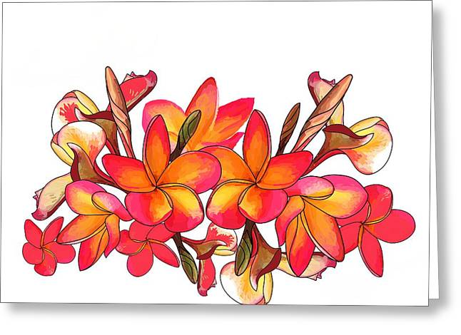 Coloured Frangipani White Bkgd1 Greeting Card
