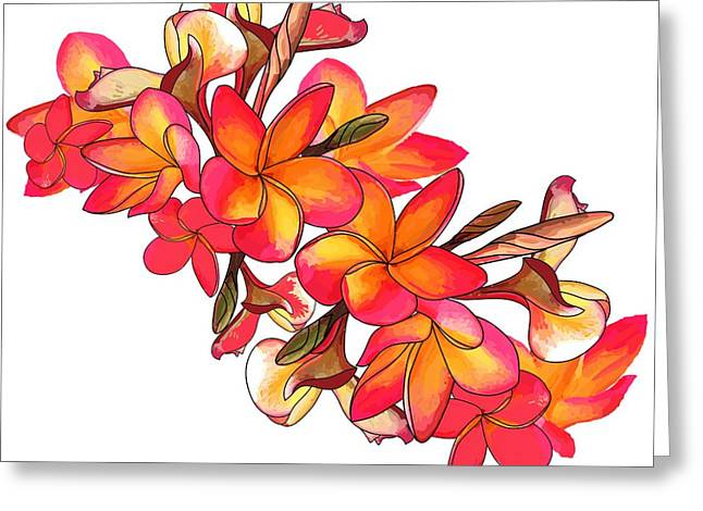 Coloured Frangipani White Bkgd2 Greeting Card