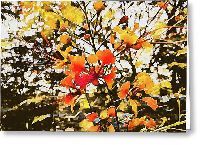 Colourful Leaves Greeting Card
