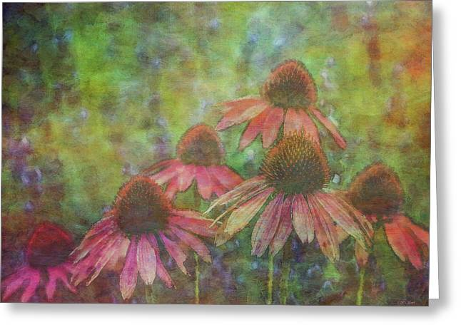 Coneflowers Among The Lavender 1667 Idp_2 Greeting Card