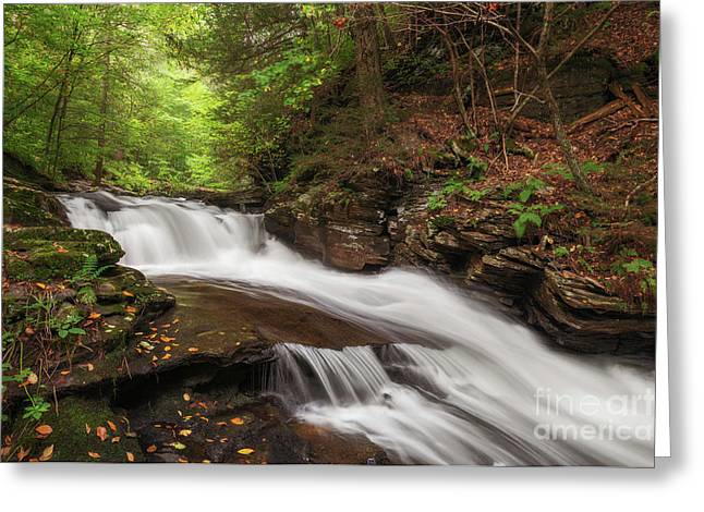 Greeting Card featuring the photograph Conestoga Falls by Sharon Seaward