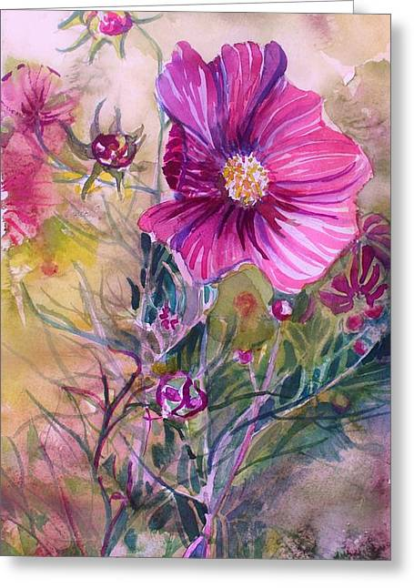 Cosmos For Kristina Greeting Card