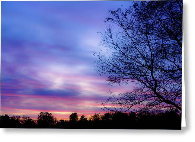 Cotton Candy Sunset In October Greeting Card