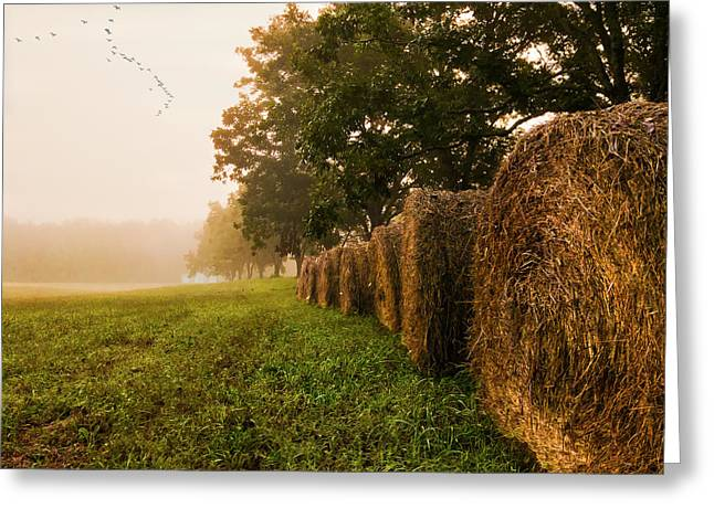 Greeting Card featuring the photograph Country Morning Mist by Mark Guinn
