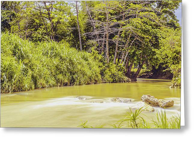 Country River In Trelawny Jamaica Greeting Card