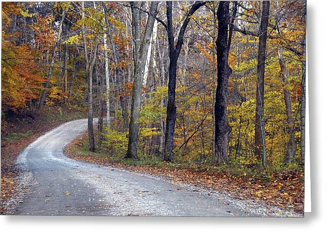 Greeting Card featuring the photograph Country Road On Fall Day by Mike Murdock