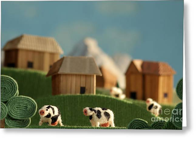 Countryside With Farms, Meadows, Cows Greeting Card