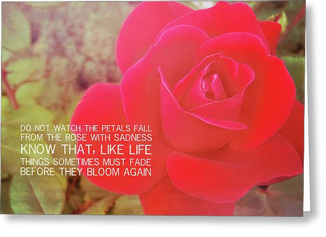 Crimson Velvet Quote Greeting Card by JAMART Photography