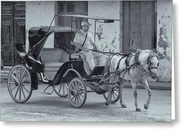Cuban Horse Taxi Greeting Card