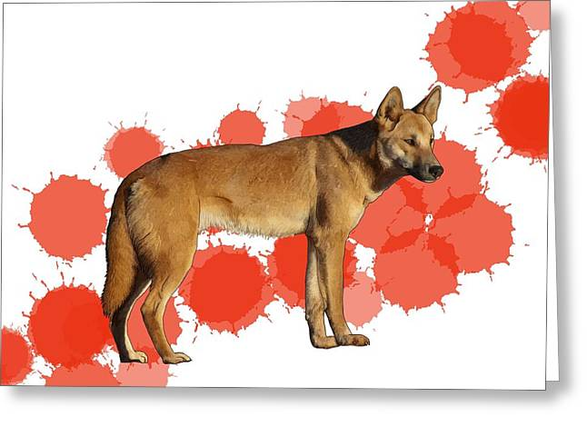 D Is For Dingo Greeting Card