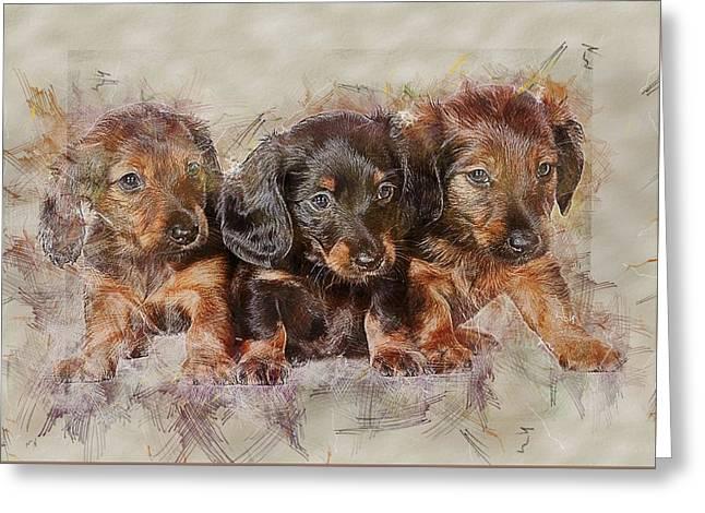 Dachshund Three Puppies Greeting Card