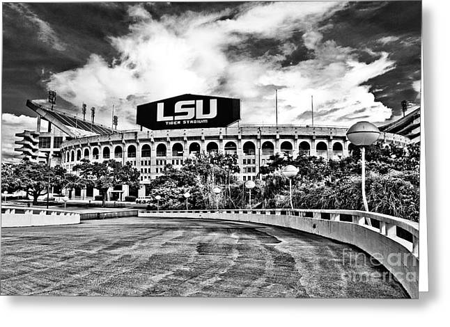 Death Valley - Hdr Bw Greeting Card
