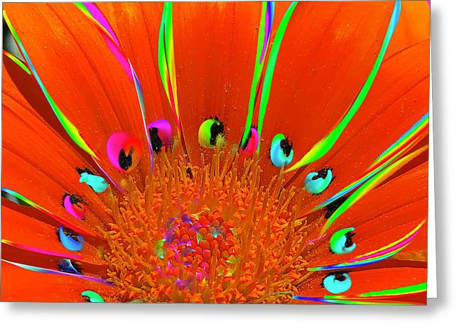 Greeting Card featuring the digital art Deep Coral Bloom  by Cindy Greenstein