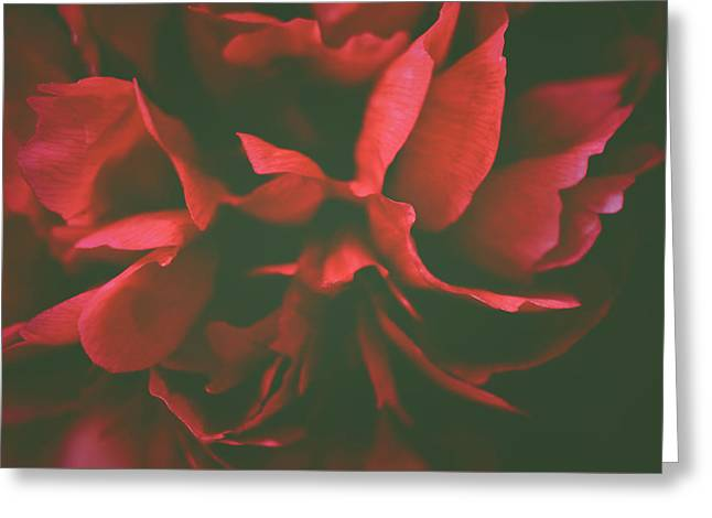 Deep Red Greeting Card