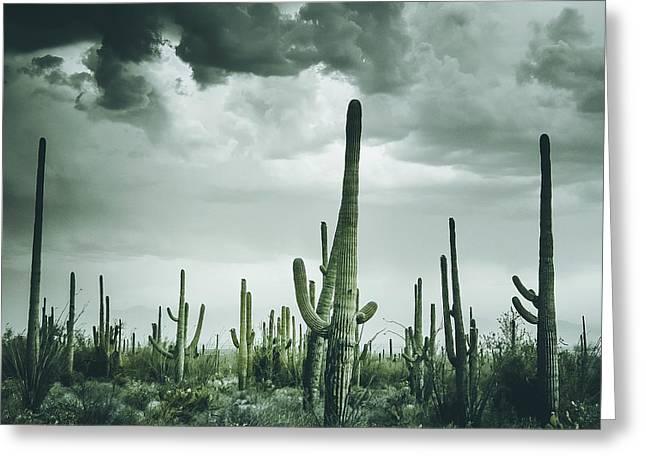 Desert Storm In Arizona Greeting Card
