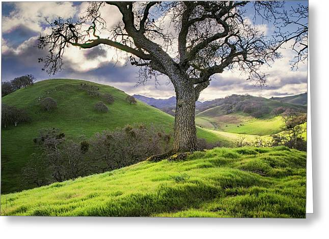 Diablo Winter Hills Greeting Card by Vincent James