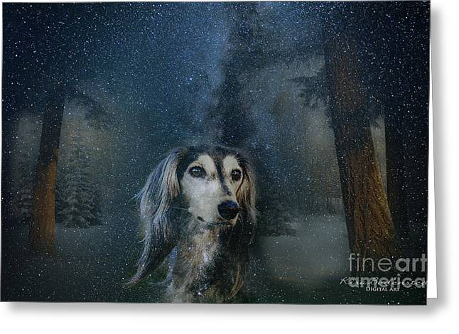 Dog In Winter Greeting Card