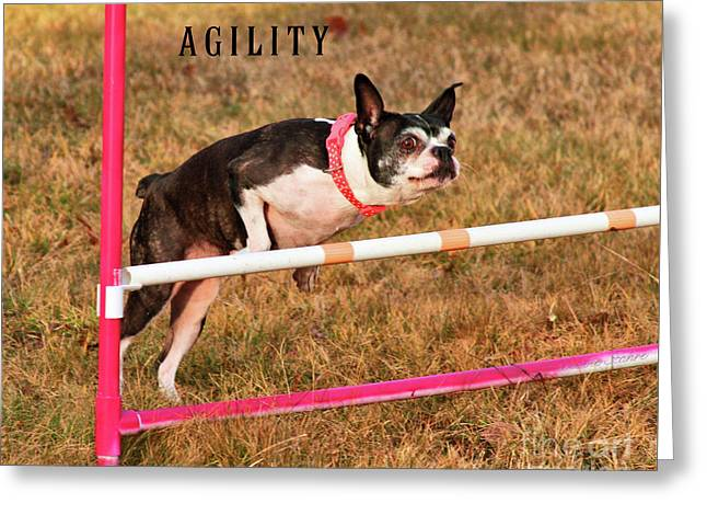 Doggie Agility  Greeting Card