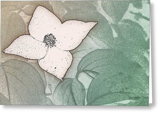 Dogwood Flower Stencil On Sandstone Greeting Card