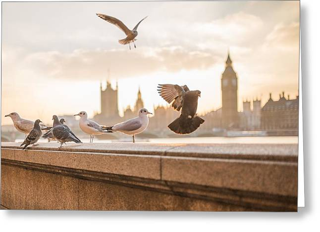 Greeting Card featuring the photograph Doves And Seagulls Over The Thames In London by Top Wallpapers