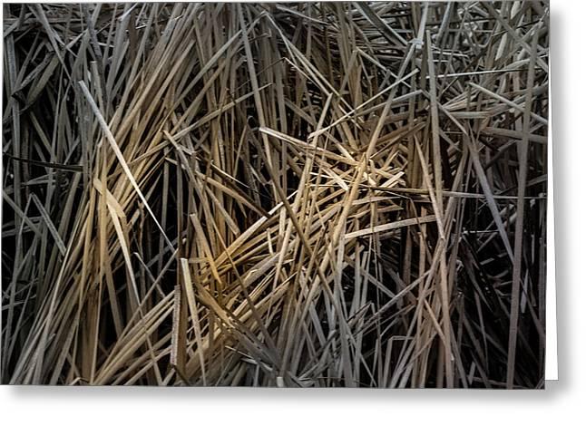 Dried Wild Grass IIi Greeting Card
