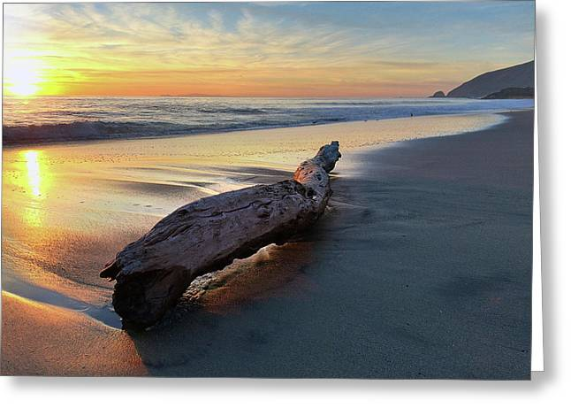 Drift Wood At Sunset II Greeting Card