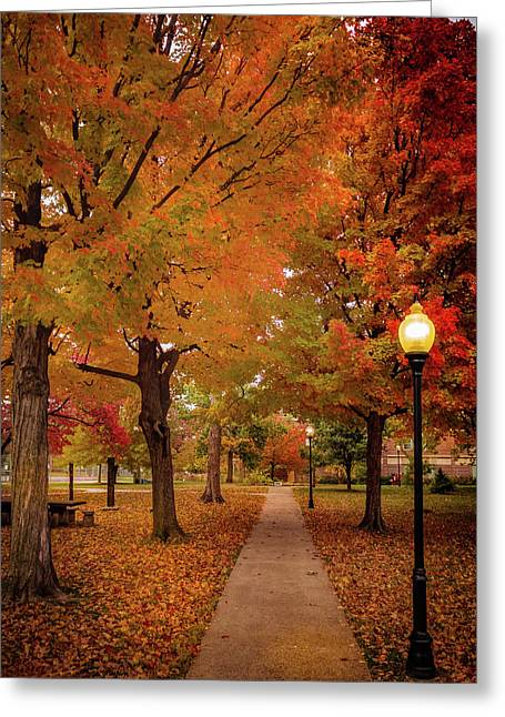 Drury Autumn Greeting Card