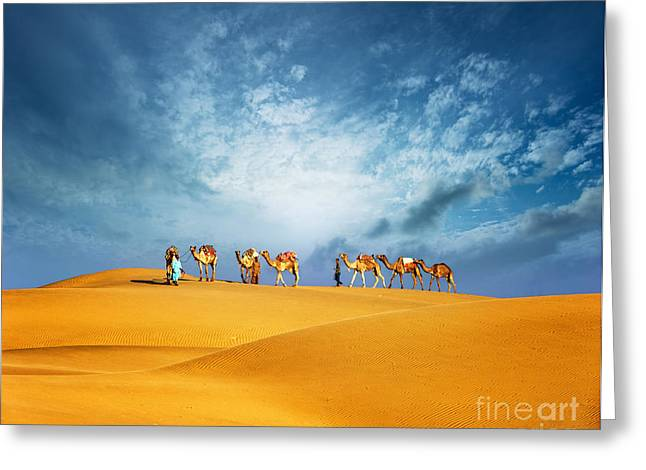 Dubai Desert Camel Safari. Arab Greeting Card