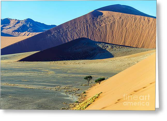 Dunes In Sossusvlei Plato Of Namib Greeting Card