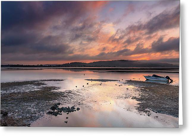 Dusky Pink Sunrise Bay Waterscape Greeting Card