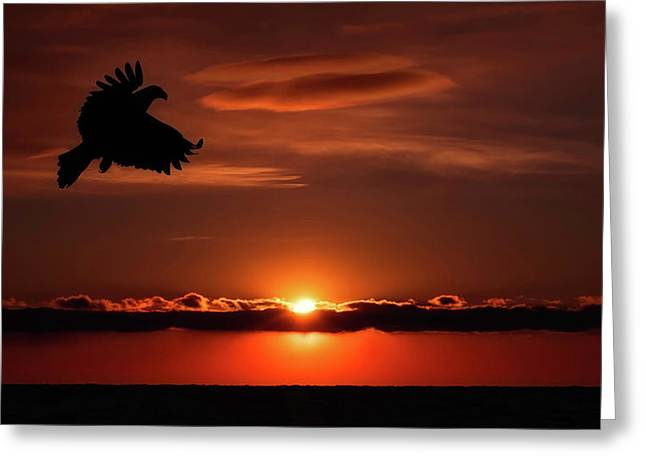 Eagle In A Red Sky Greeting Card
