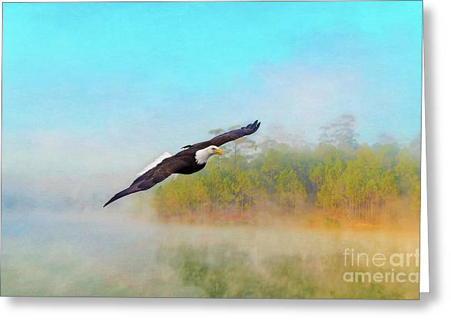 Eagle Out Of The Mist Greeting Card