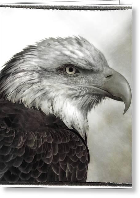 Eagle Protrait Greeting Card
