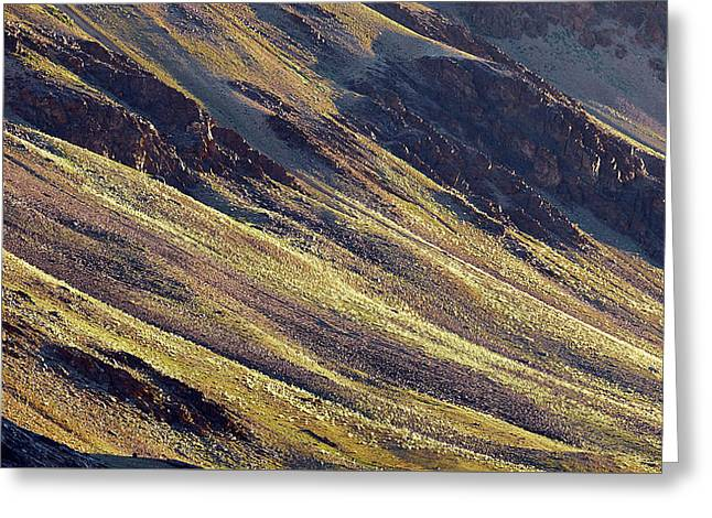 Early Morning Light On The Hillside In Sarchu Greeting Card
