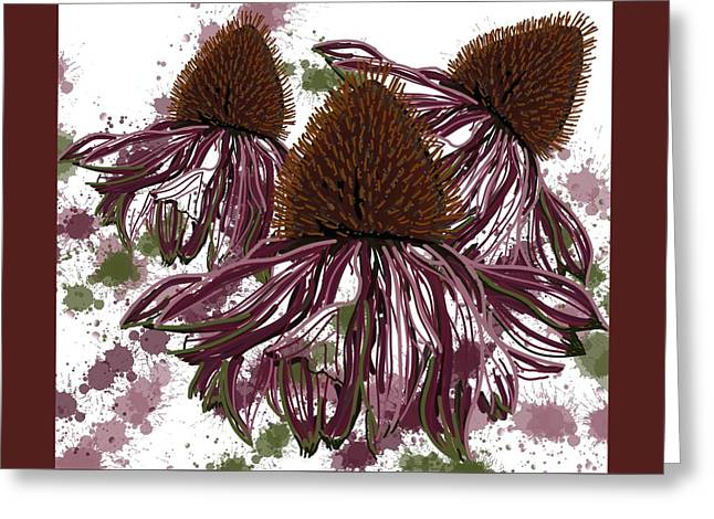 Echinacea Flowers Line Greeting Card