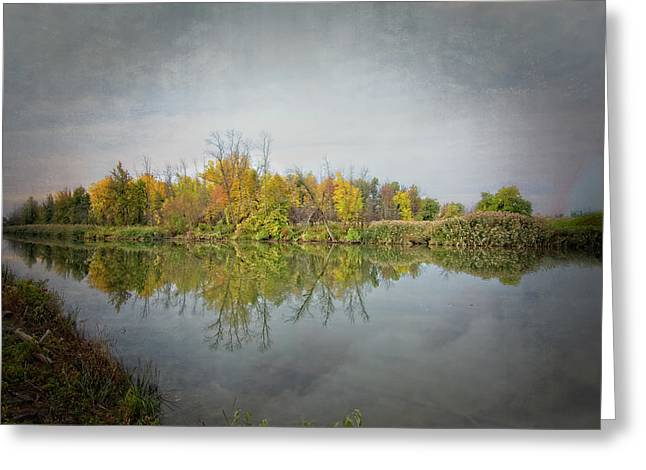 Greeting Card featuring the photograph Ellicott Creek Reflections by Guy Whiteley