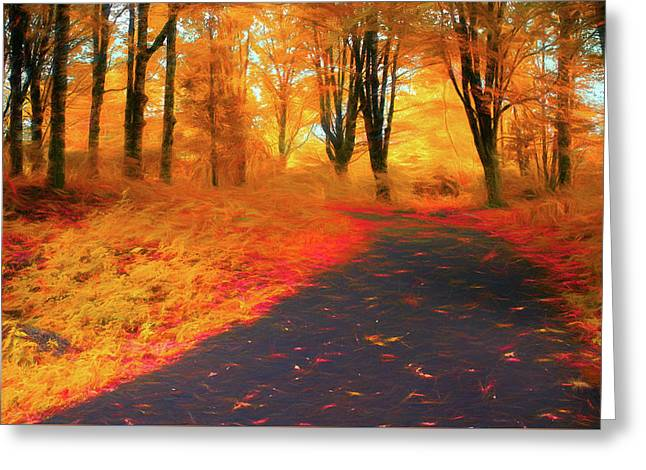 Emmaus Community Park Path - Colors Of Fall Greeting Card