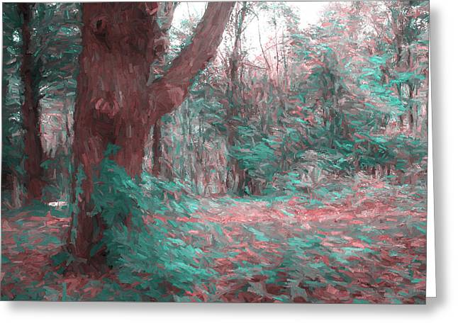 Emmaus Community Park Trail With Large Tree Greeting Card