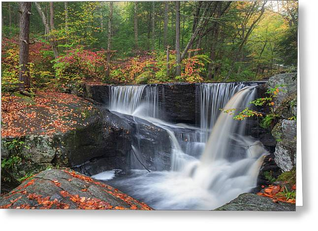 Greeting Card featuring the photograph Enders Falls Autumn 2 by Bill Wakeley