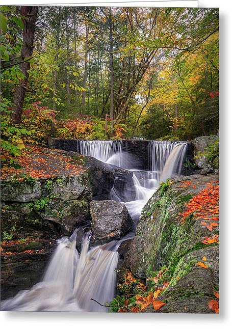 Greeting Card featuring the photograph Enders Falls Autumn 2018 by Bill Wakeley