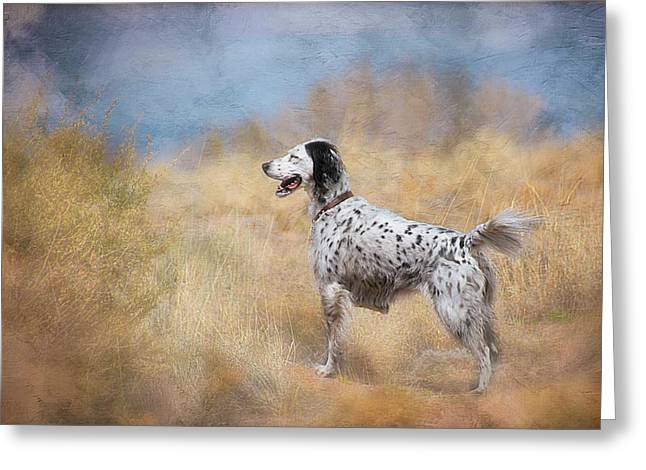 English Setter Dog Greeting Card
