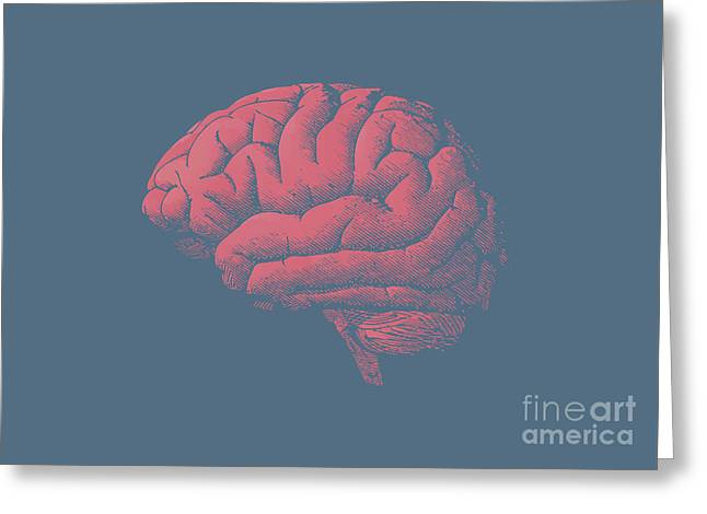 Engraving Brain Illustration With Tint Greeting Card