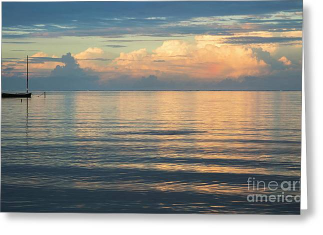 Greeting Card featuring the photograph Evening Light Over Kaneohe Bay by Charmian Vistaunet