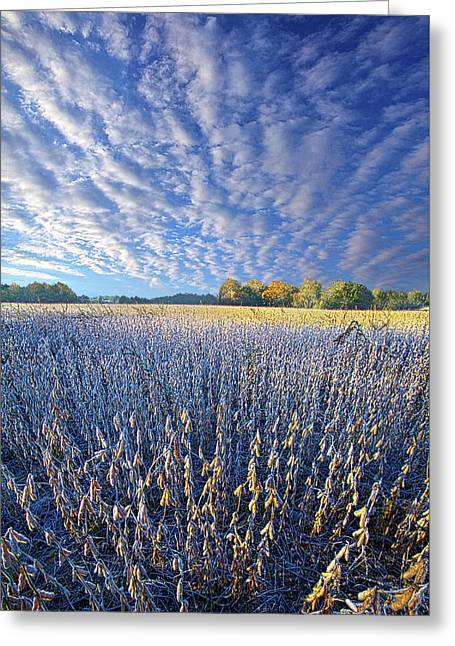Greeting Card featuring the photograph Every Moment Spent by Phil Koch